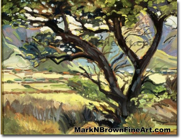 Base Of West Maui Mountains | Hawaii Art by Hawaiian Artist Mark N. Brown |