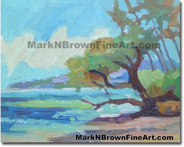 Aukai Beach 2014 Miniature Hawaii Fine Art Image by Hawaii Artist Mark N. B